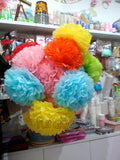 Pom Poms Bouquet Assorted Colors - Funzoop