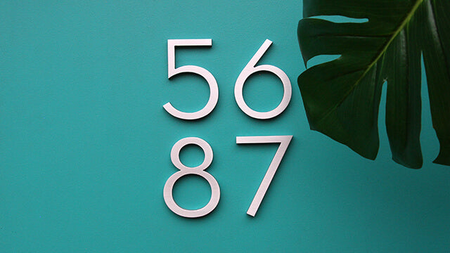 "6"" Palm Springs brushed aluminum numbers"