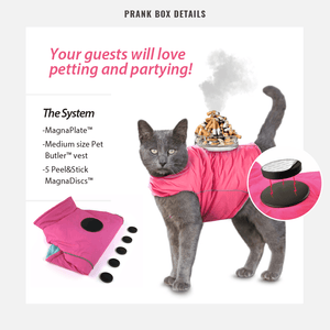"""New Pet Sweep Prank Fake Gag Gift Box For the Pet Lover 8/""""X 6/"""" x2"""