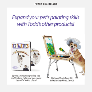 PET PAINT KIT