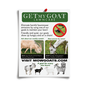 Mowing Goats