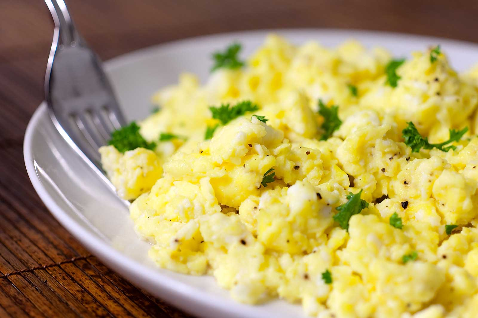 Scrambled eggs for dog food dinner Wellbeing for Dogs