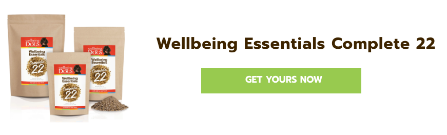 Get Wellbeing Essential 22 now