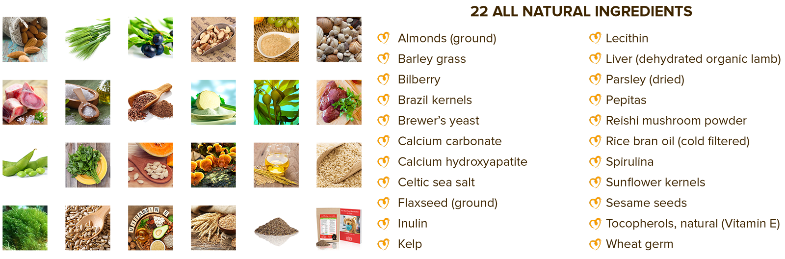 Wellbeing Essentials Complete 22 Ingredients Wellbeing for Dogs