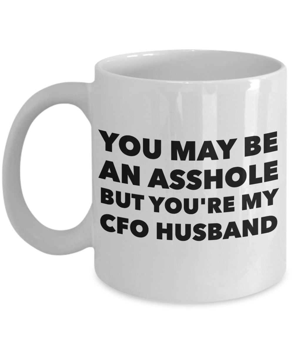 You May Be An Asshole But You'Re My Cfo Husband Gag Gift for Coworker Boss Retirement or Birthday - Ribbon Canyon