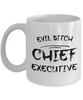 Evil Bitch Chief Executive, 11Oz Coffee Mug Best Inspirational Gifts and Sarcasm Perfect Birthday Gifts for Men or Women / Birthday / Christmas Present - Ribbon Canyon