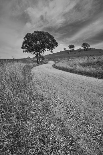 'Beyond The Tree' Dusty Road Black & White Photographic Print