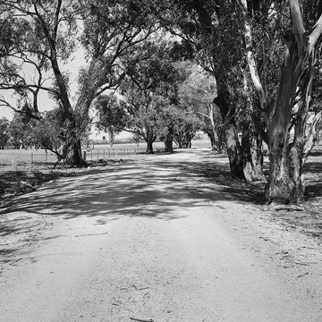 'Shadows' Dusty Road Black & White Photographic Print