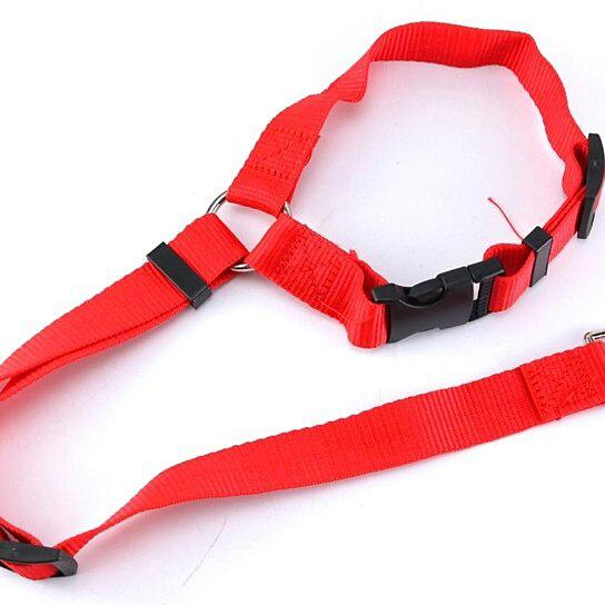 Adjustable Pet Harness Seat Belt Pet Supplies Red - DailySale
