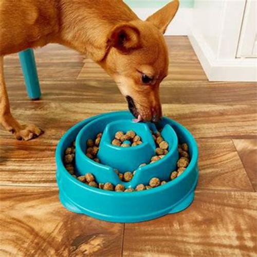 Healthy Slow Feeder Pet Bowl Pet Supplies - DailySale