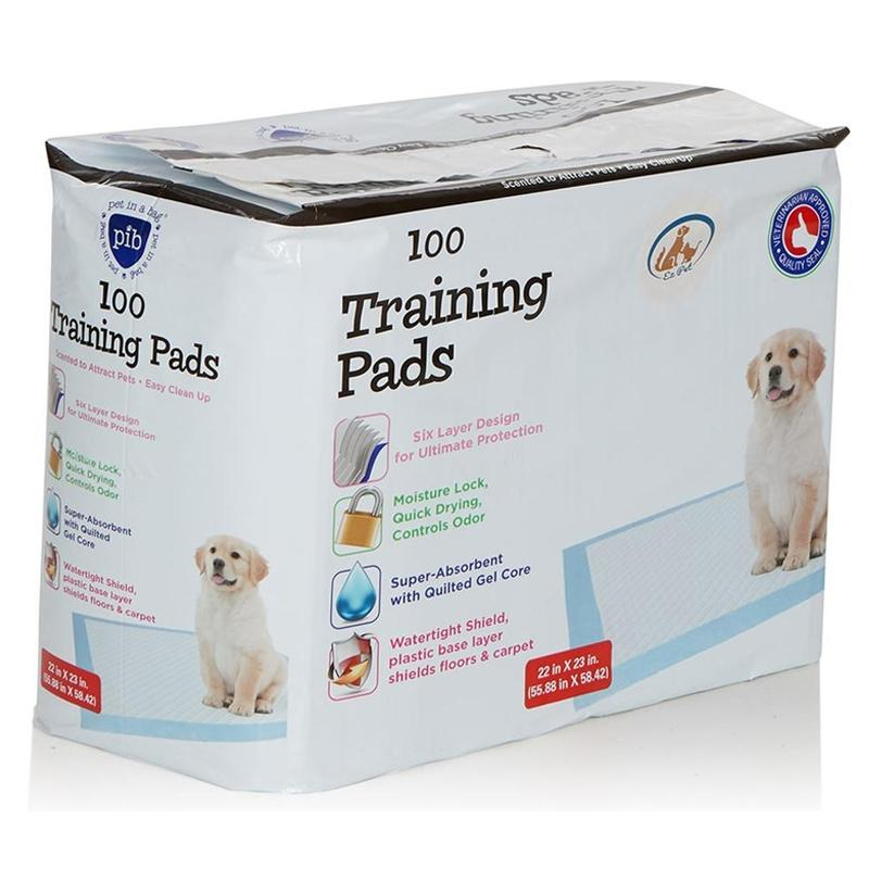 Heavy-Duty Training Pads for Pets Pet Supplies 100 Pack - DailySale