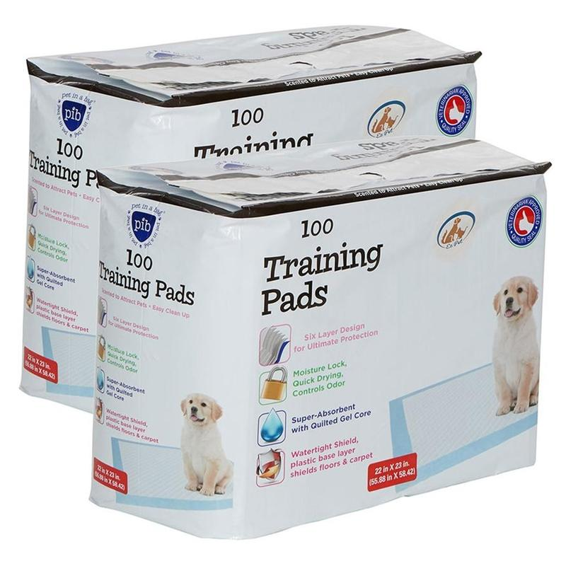 Heavy-Duty Training Pads for Pets Pet Supplies 200 Pack - DailySale