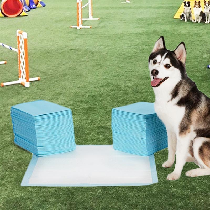 Heavy-Duty Training Pads for Pets Pet Supplies - DailySale