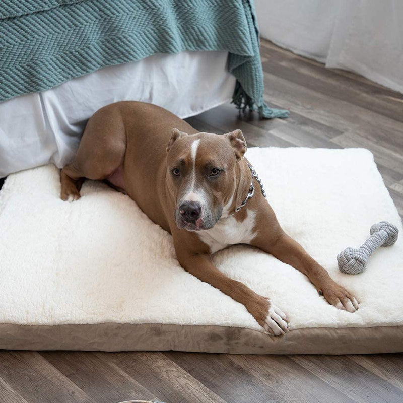 Paws & Pals Orthopedic Pet Bed Foam-Mattress for Dogs and Cats Pet Supplies - DailySale
