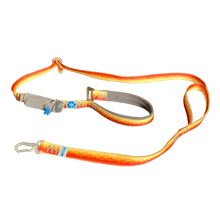 Load image into Gallery viewer, Re-WALK Dog Leash  (webbing 100% recycled plastic)