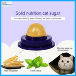 Cat Treat (3-Pack)