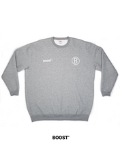 Load image into Gallery viewer, Classic Design Sweatshirt / BOOST°