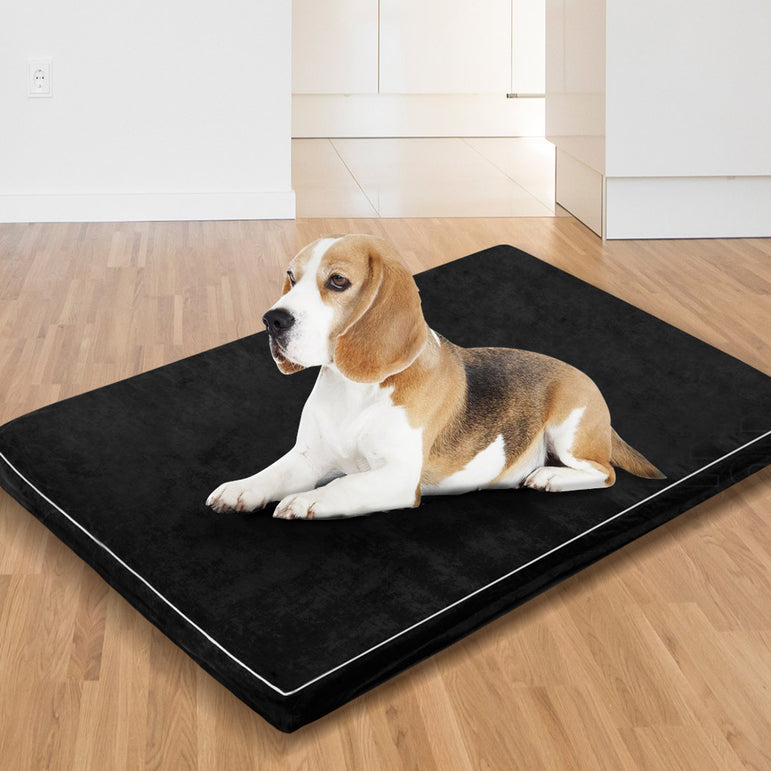 PaWz Large Size 4cm Thickness Memory Foam Orthopaedic Pet Bed with Removable Cover