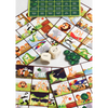 A Day in the Jungle - Social Emotional Bingo - Age 5+