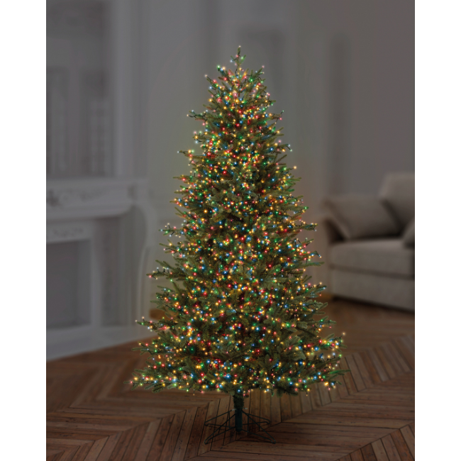 Christmas Tree with 750 mulit-coloured tree lights
