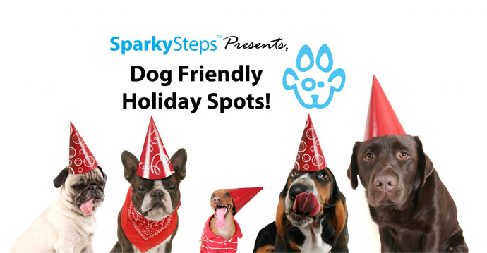 Dog Friendly Holiday Spots