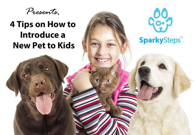 4 Tips on How to Introduce a New Pet to Kids