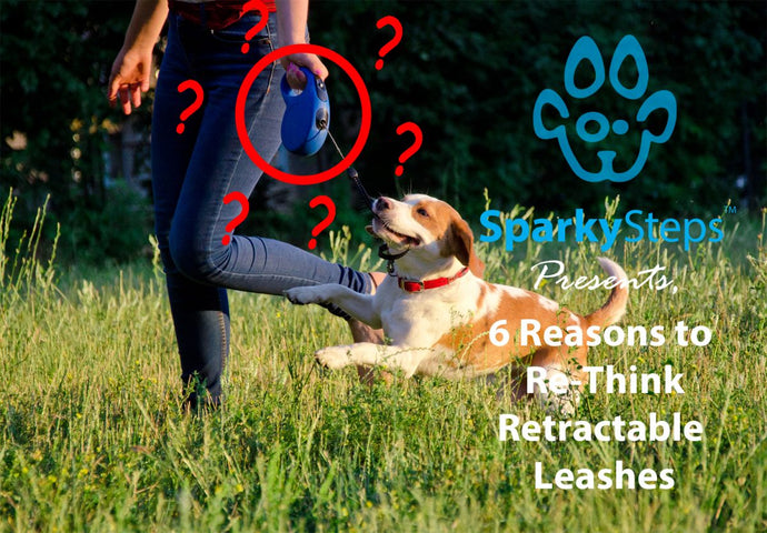 Six Reasons to Re-Think Retractable Leashes