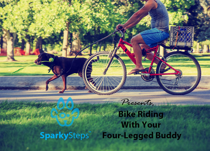 Bike Riding With Your Four-Legged Buddy