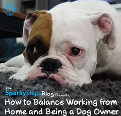 How to Balance Working from Home and Being a Dog Owner