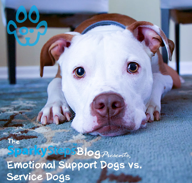 Emotional Support Dogs vs. Service Dogs