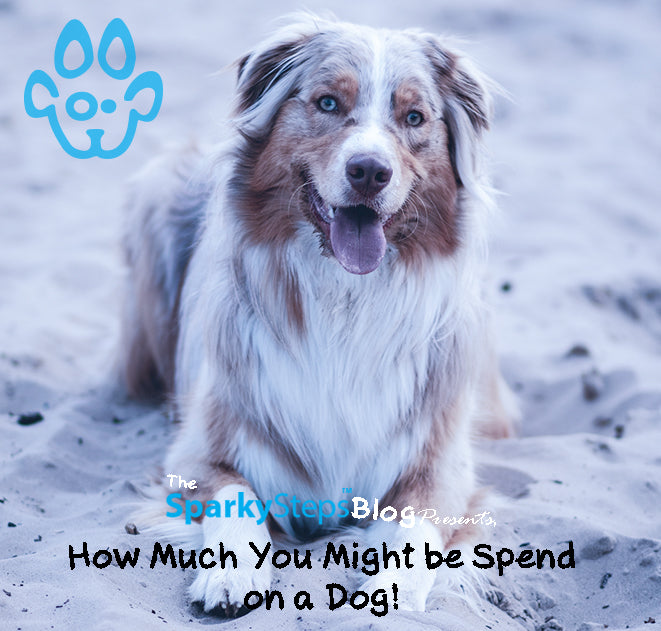 How Much You Might Spend on Owning a Dog