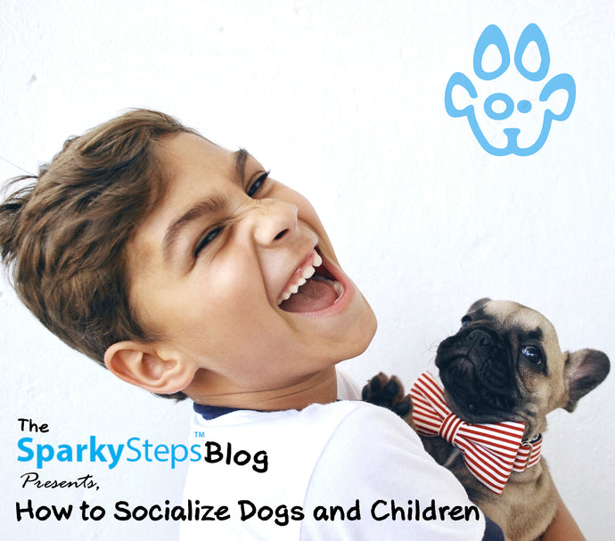 How to Socialize Dogs and Children