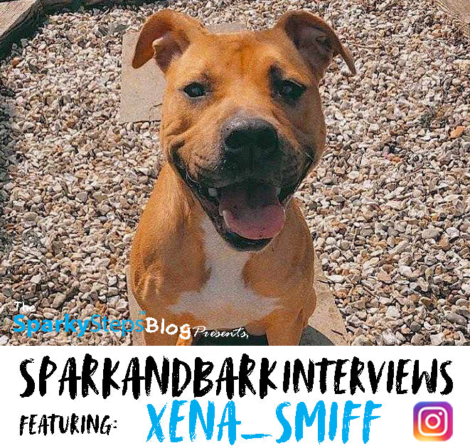 Interview With Xena_Smiff
