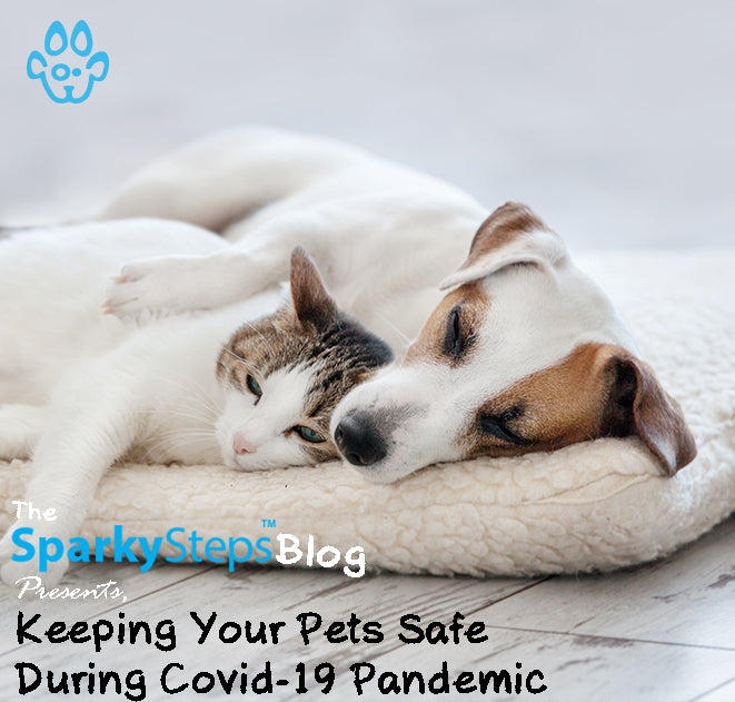 Keeping Your Pets Safe During Covid-19 Pandemic