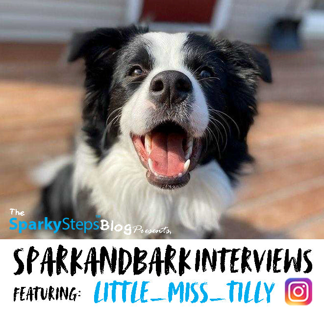 Interview with Little_Miss_Tilly
