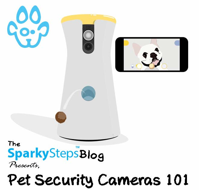 Pet Security Cameras 101: Handy Shopping Guidelines