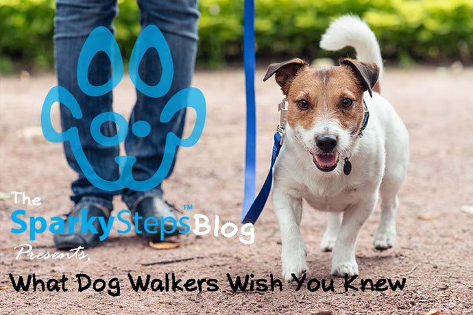 What Dog Walkers Wished You Knew