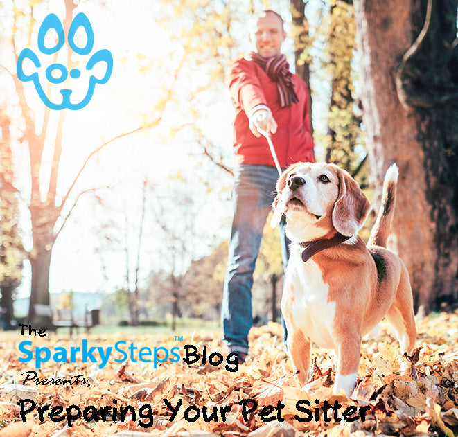 The Ultimate Guide to Preparing your Pet Sitter