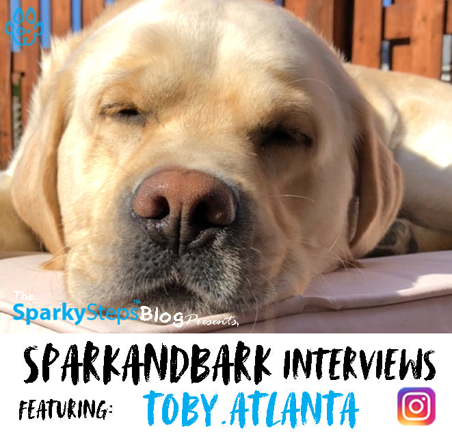 Interview With Toby.Atlanta