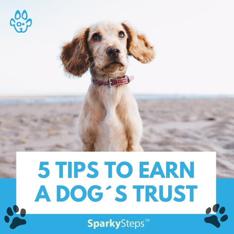 5 Tips to Earn a Dog´s Trust
