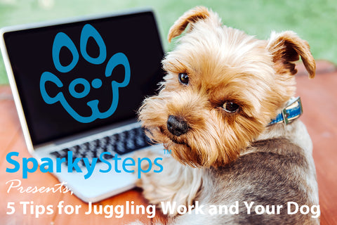 Sparky Steps - 5 Tips for Juggling Work and Your Dog