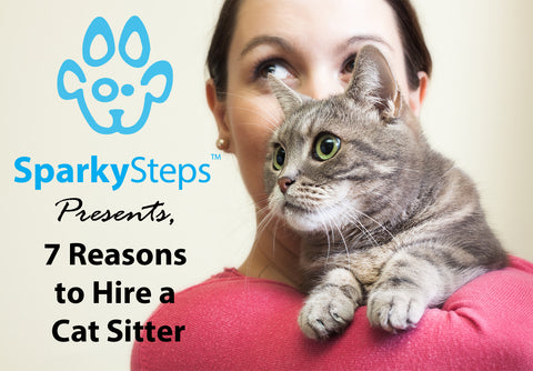 Sparky Steps - 7 Significant Reasons to Hire a Professional Cat Sitter