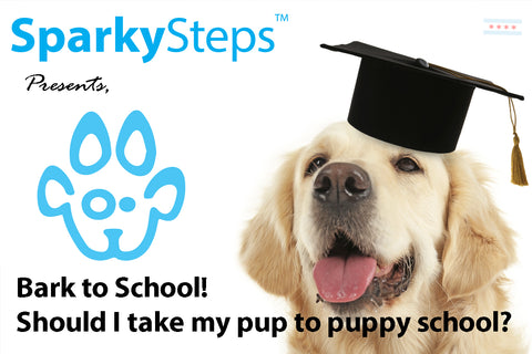 Sparky Steps - Back to School