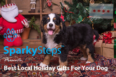 Sparky Steps - Best Local Holiday Gifts For Your Dog