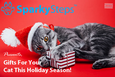 Sparky Steps - Best Gifts for Your Cat This Holiday Season