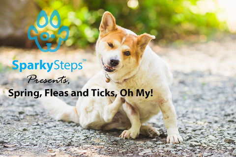 Sparky Steps - Spring, Fleas and Ticks, Oh My!