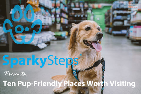 Sparky Steps - Ten Pup-Friendly Places Worth Visiting