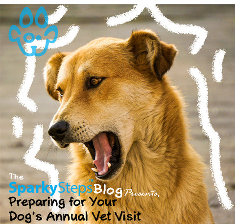 Sparky Steps - Preparing Your Dogs Annual Vet Visit