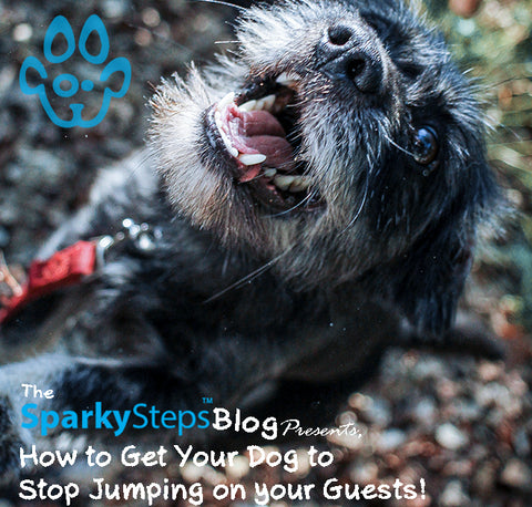 Sparky Steps - Get Your Dog to Stop Jumping on Your Guests