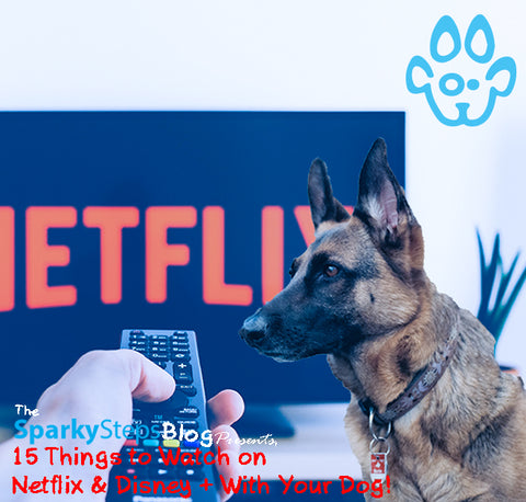 Sparky Steps - 15 Things to Watch on Netflix & Disney + With Your Dog